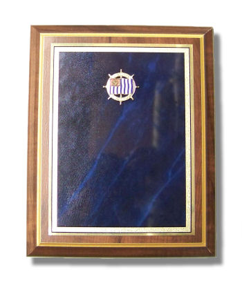 "USPS Award Plaque 7"" x 9"""